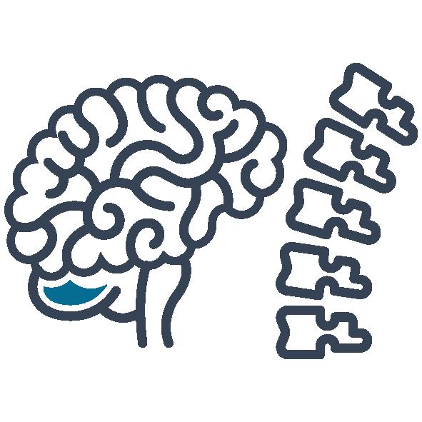 Neurochirurgia e chirurgia vertebrale